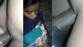 Desi village slut quick sex with her customer